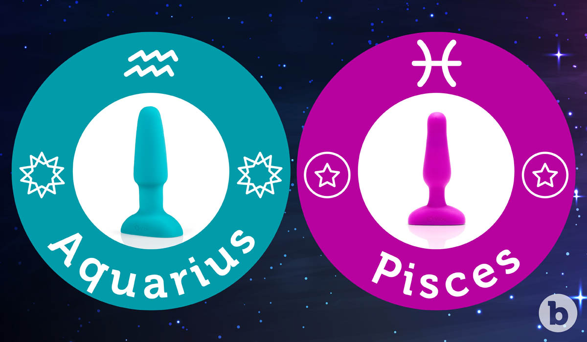 If the Aquarius zodiac sign were a b-Vibe it would be the Rimming Plug and Pisces would be the Novice Plug